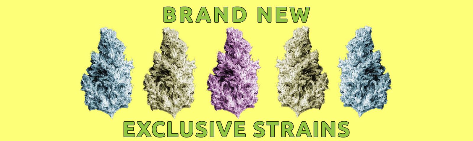 New Strains